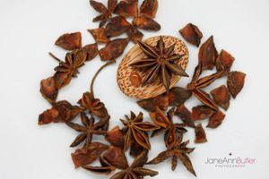 Star-Anise--JABPF026.jpg