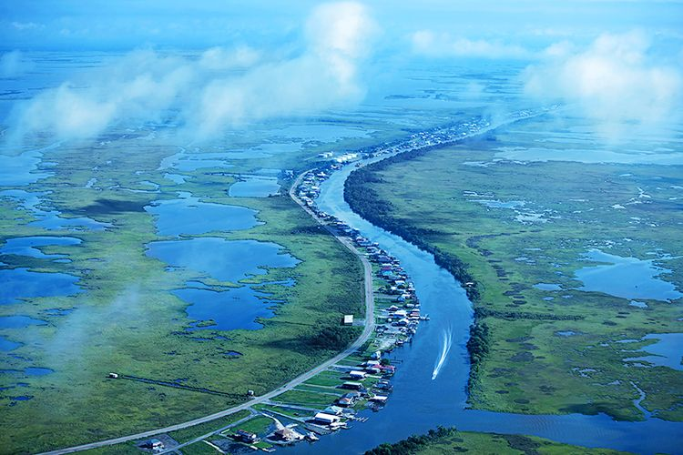 1louisiana_wetlands.jpg