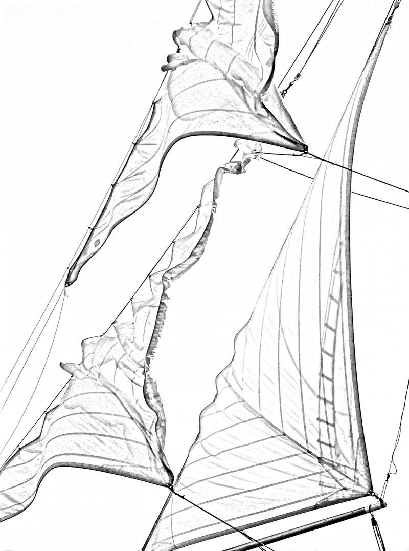 Release of Jibs - Sketch