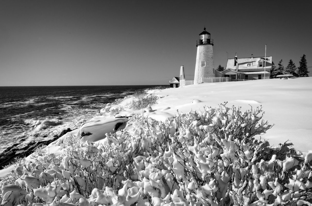 Pemaquid Lighthouse, January