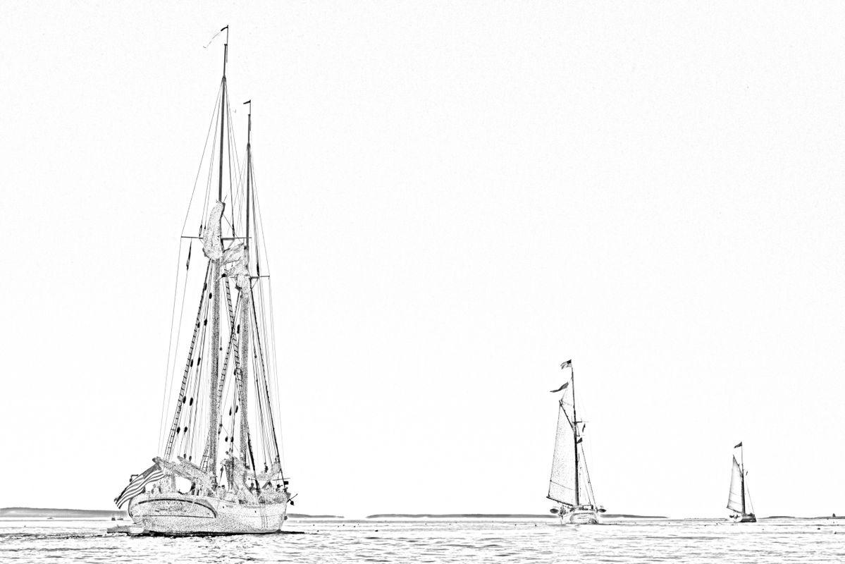 Schooner Parade - Sketch