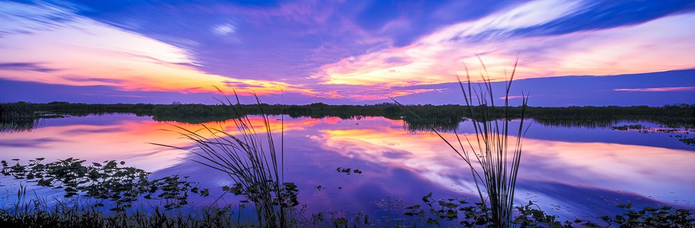 everglades_winter_sunset.jpg