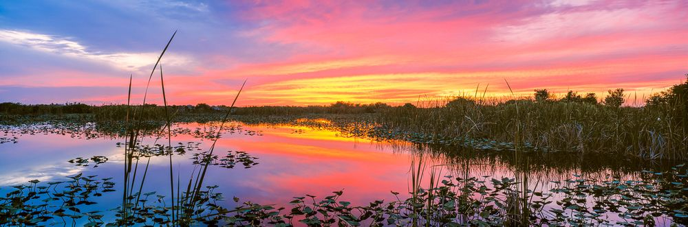 everglades_summer_sunset.jpg
