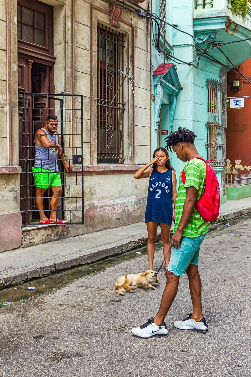cuba_puppy_playing_on_leash.jpg