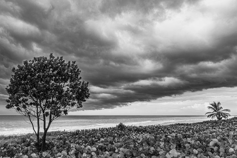 hurrican_dorian_florida_coastline.jpg