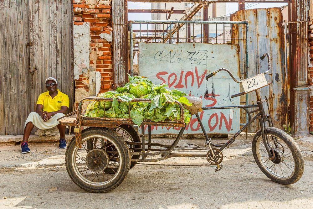 cuba_street_lettuce_vendor.jpg