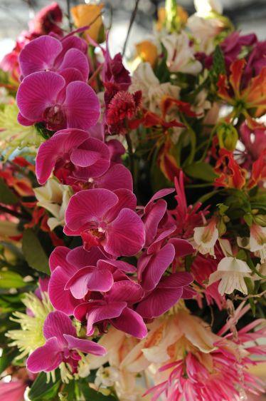 fuschia orchig flower arrangement