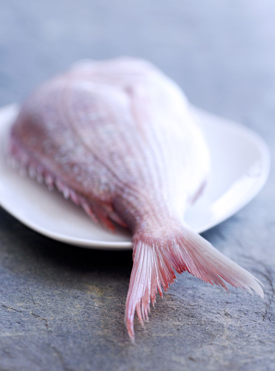 1raw_fish.jpg