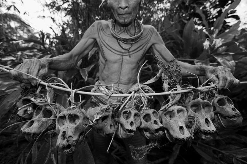 Man-Monkey-Skulls.jpg