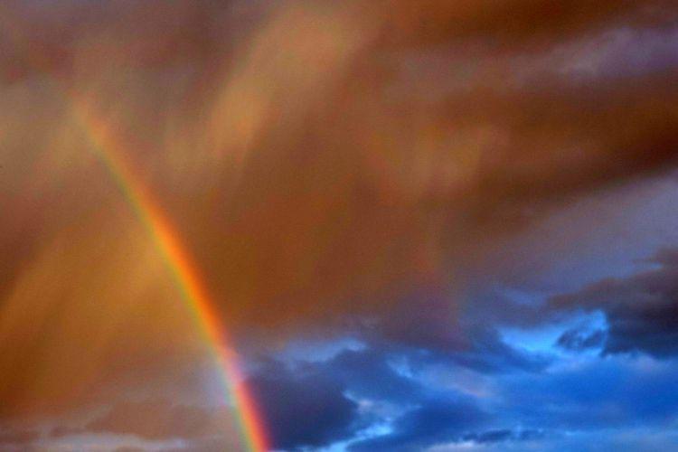 Sormy Rainbow