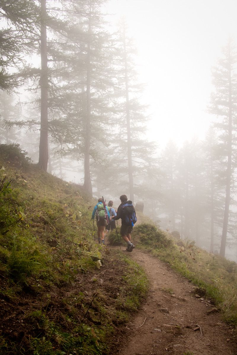 1chrisjohnsonpictures_fog_hike.jpg