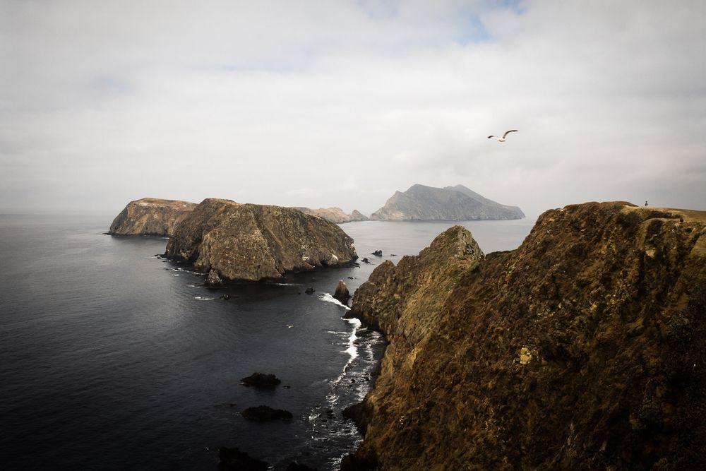 1anacapa_island.jpg