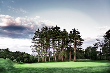 LandScape Image - Golf Course.jpg