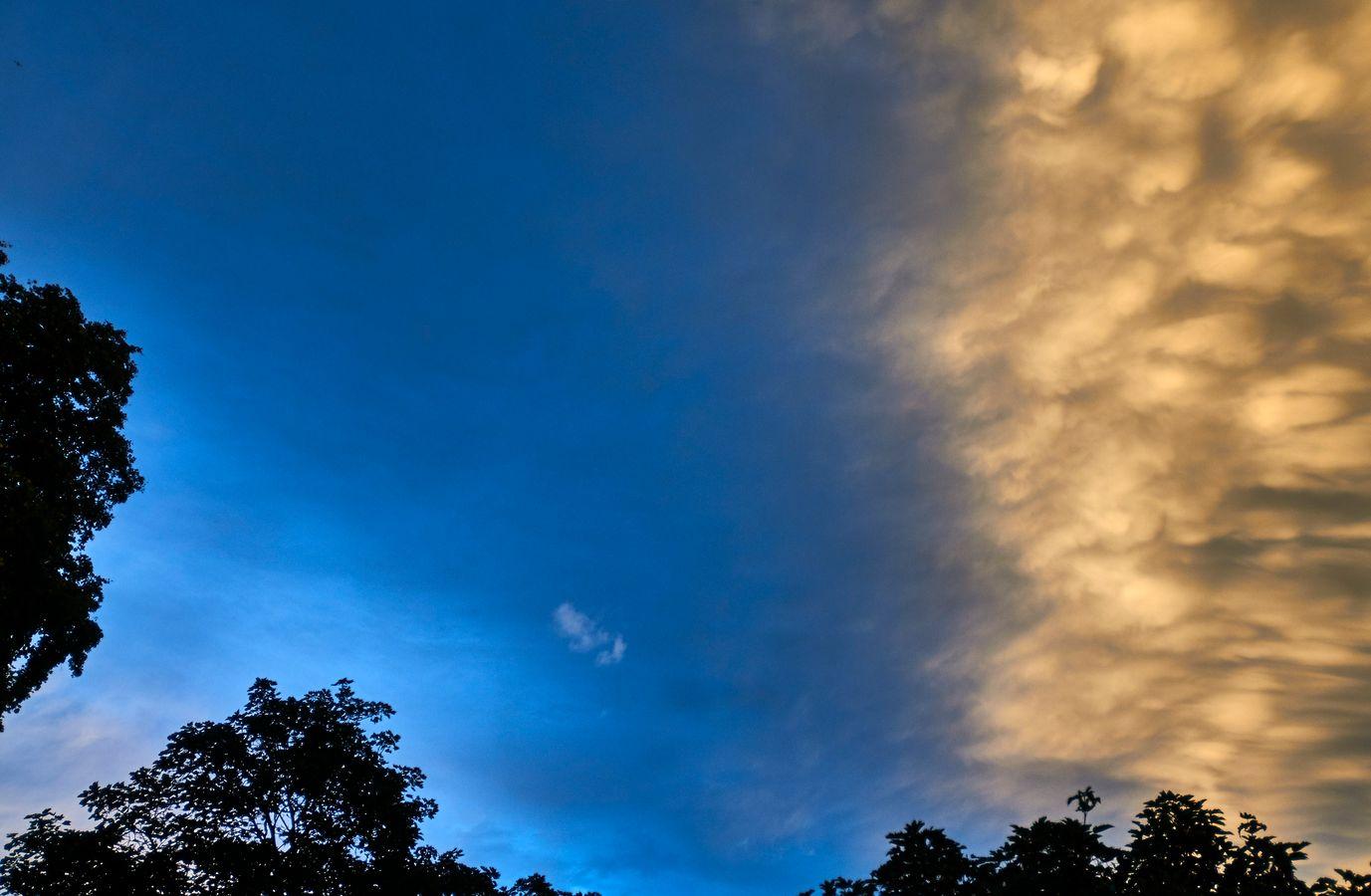 mconfer-CloudScape_DSC5679-lb.jpg