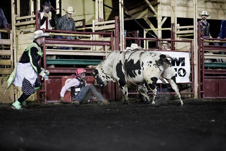 mconfer_2017Pro_Rodeo-1424-lb.jpg