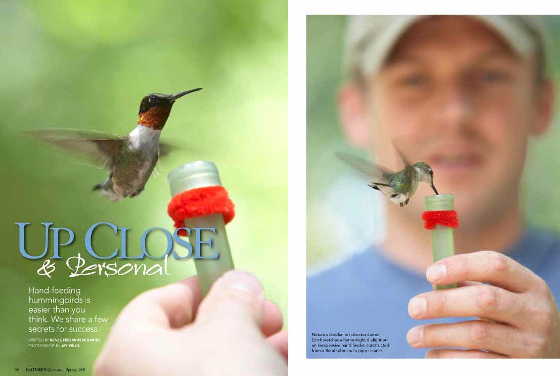 1hummingbirds.jpg