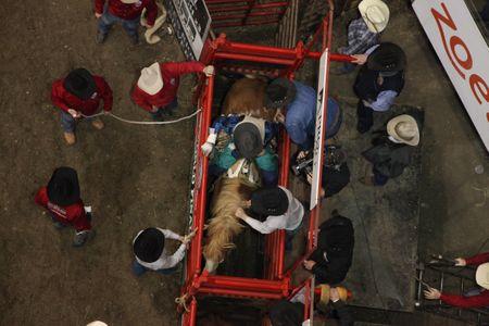 020315-spt-rodeo-76.jpg