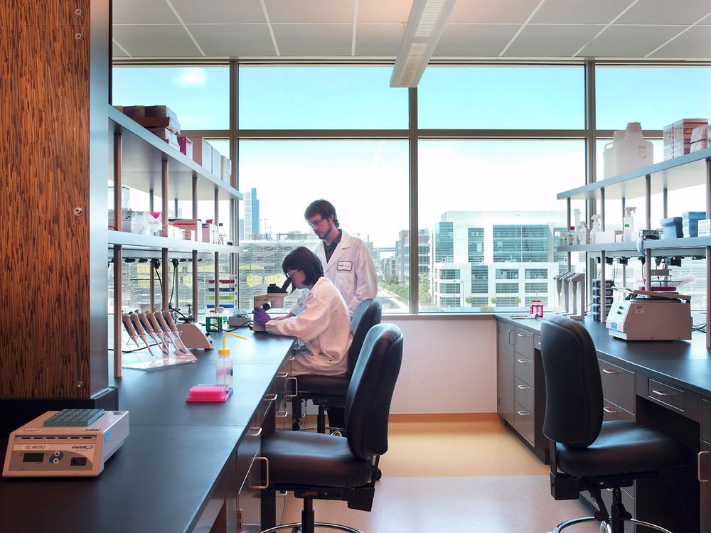 John-Sutton-Photography-Biotech Laboratory