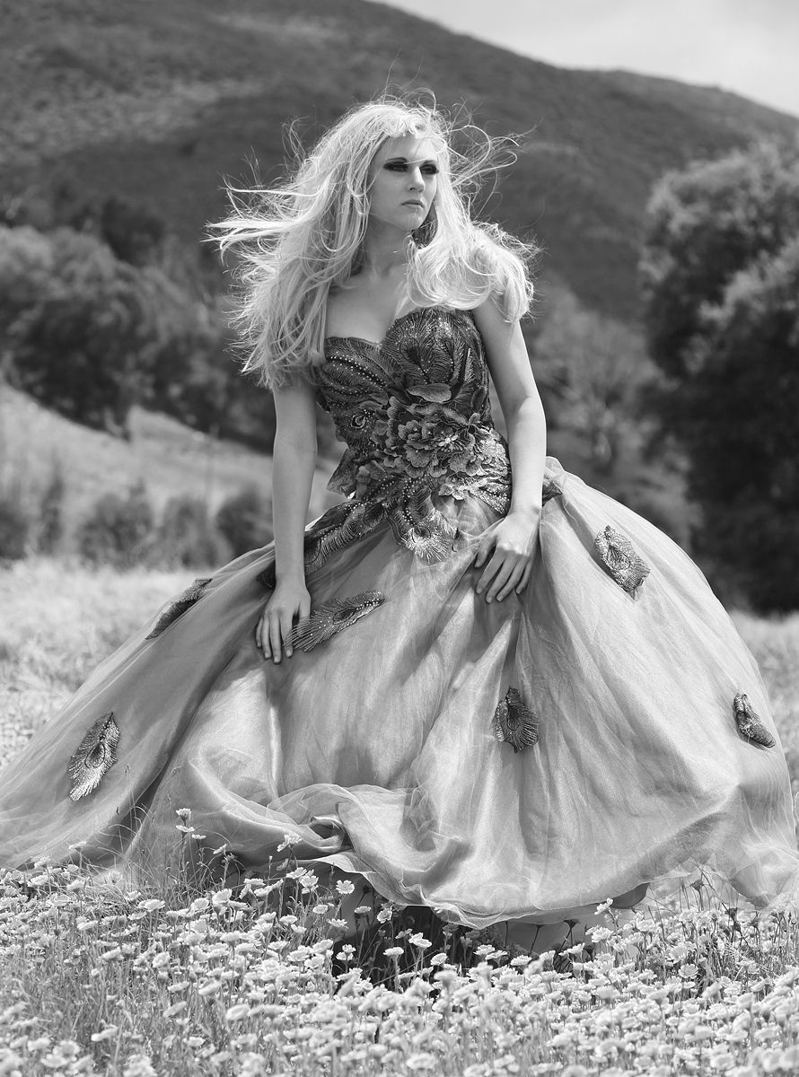 1livebooks_black_n_white_ashley_windswept_2
