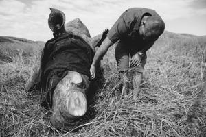 anti poaching | WILDLANDS & UNITED NATIONS