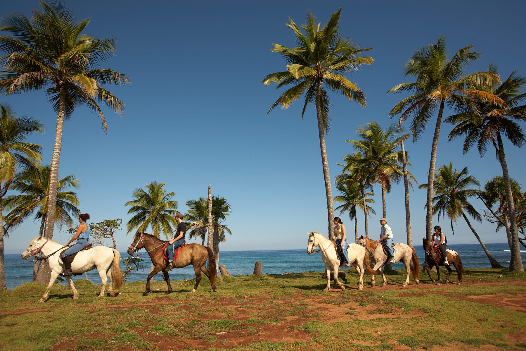 Horsebackriding in the Dominican Republic