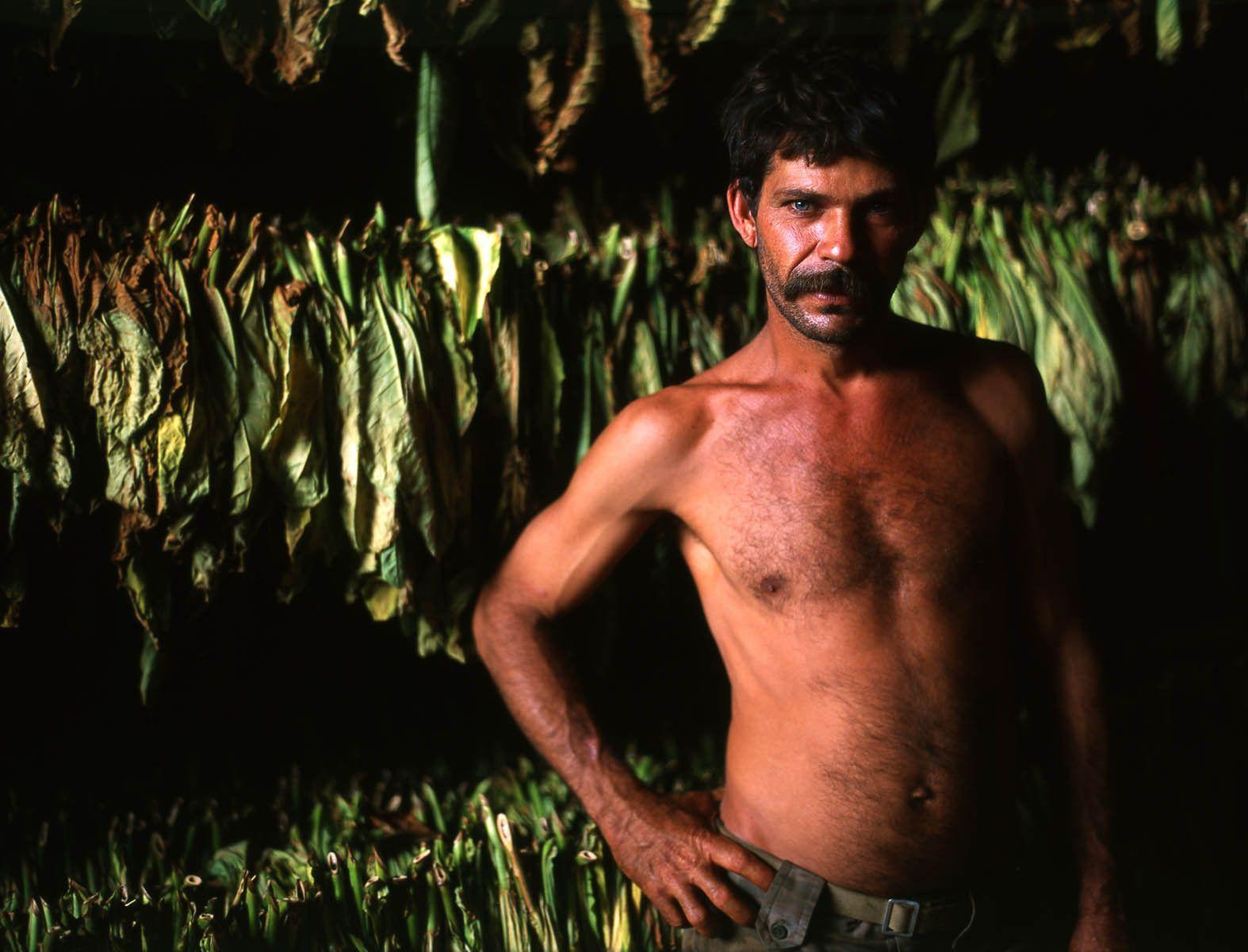 Raul, Tobacco Farmer, Vinales, Cuba