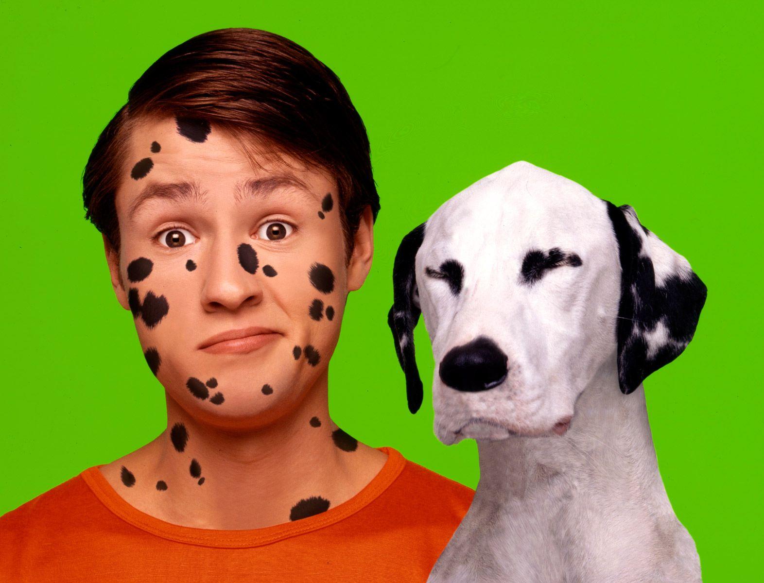 Spot-the-dog-web.jpg