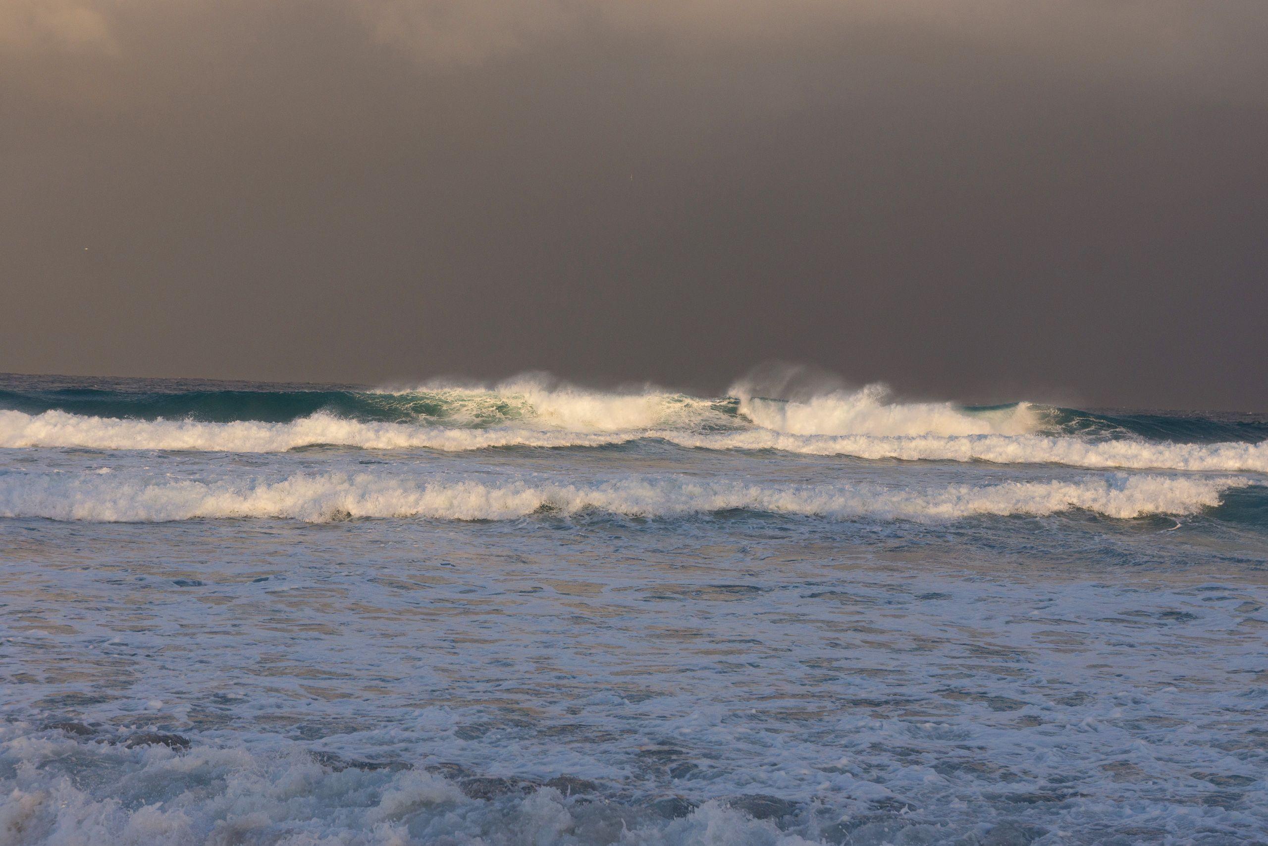 SEA SWELL 6