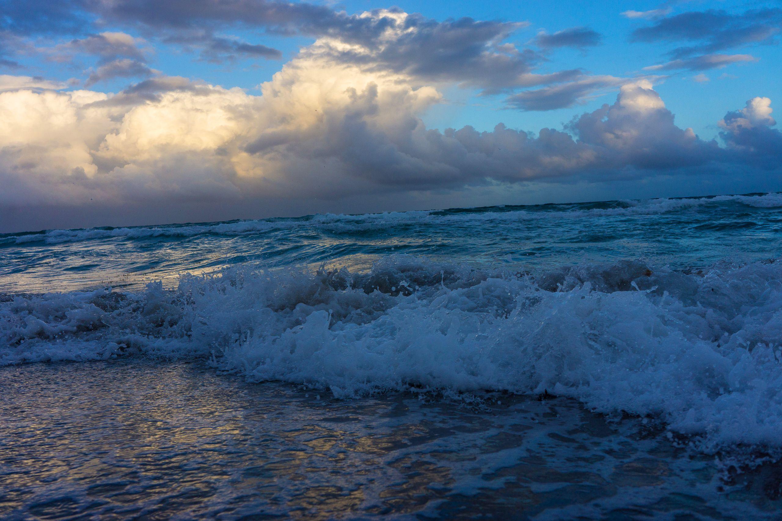 SEA SWELL 3