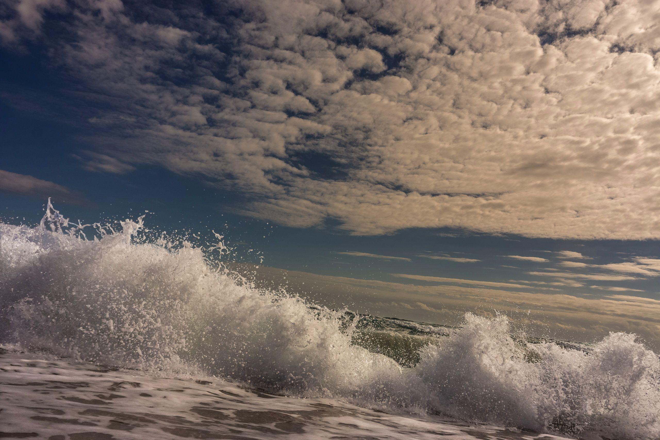 SEA SWELL 5