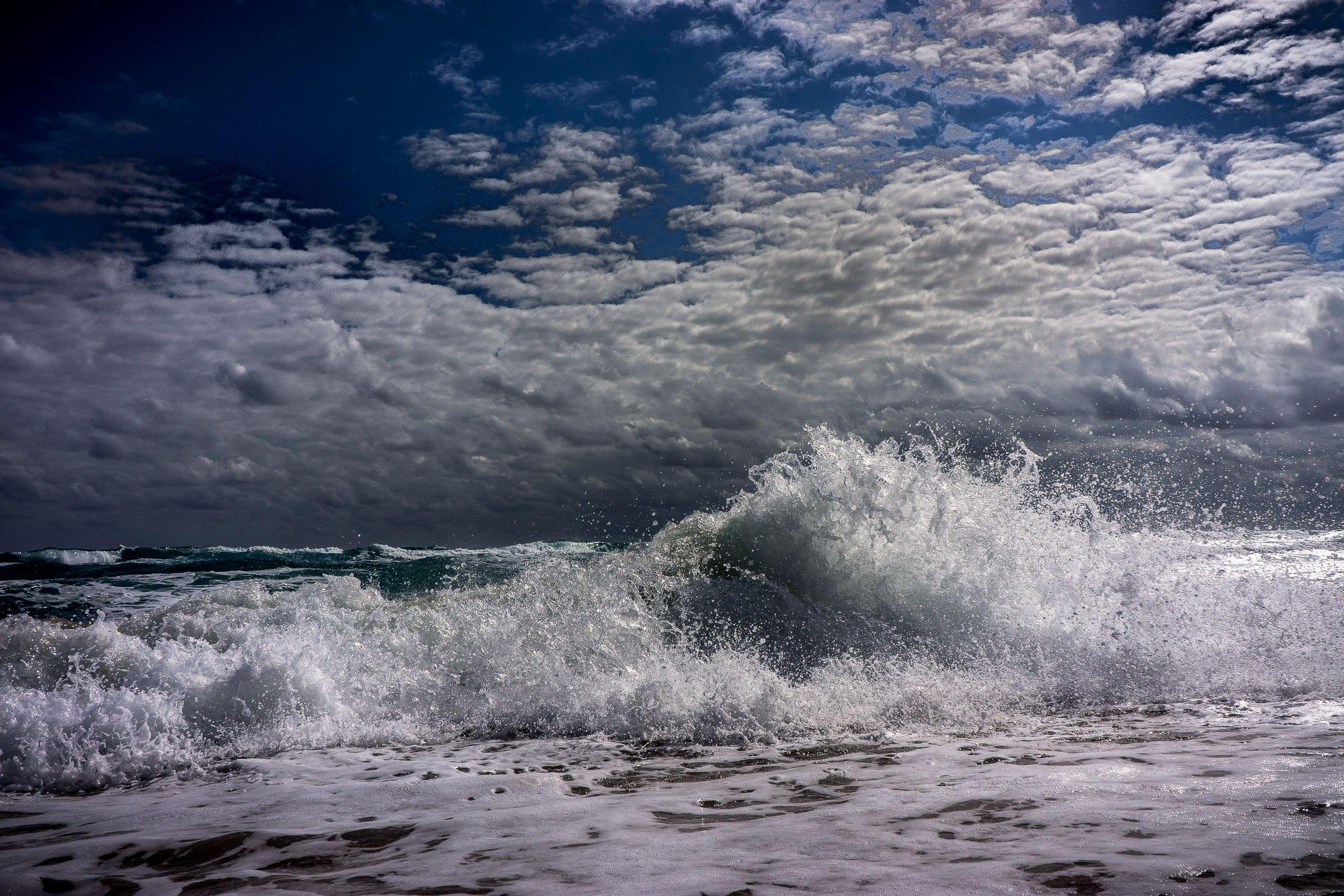 SEA SWELL 4