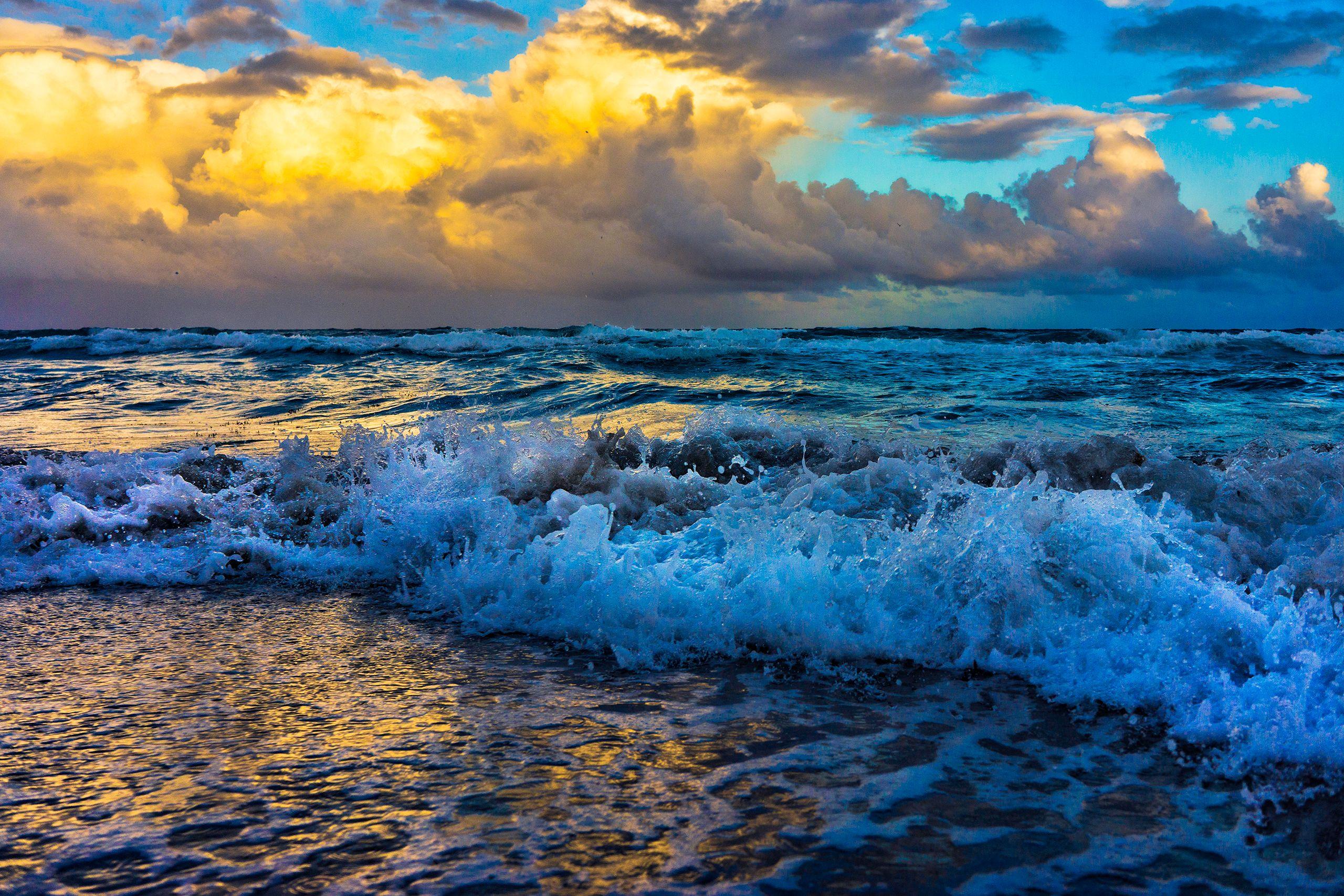 VIBRANT SEA