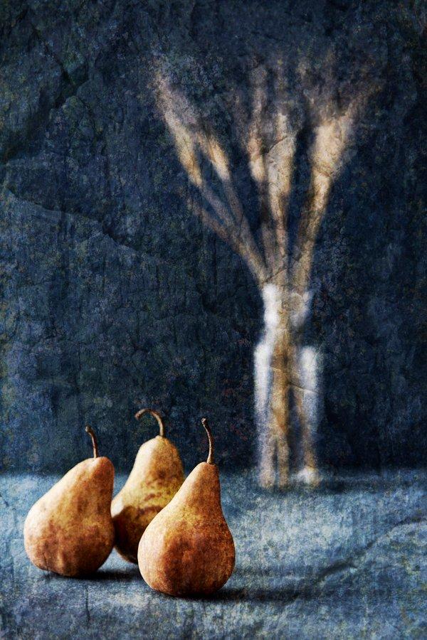 Whit_Becca_Pears_Wheat_023.jpg