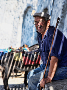 Santorini-mule-driver