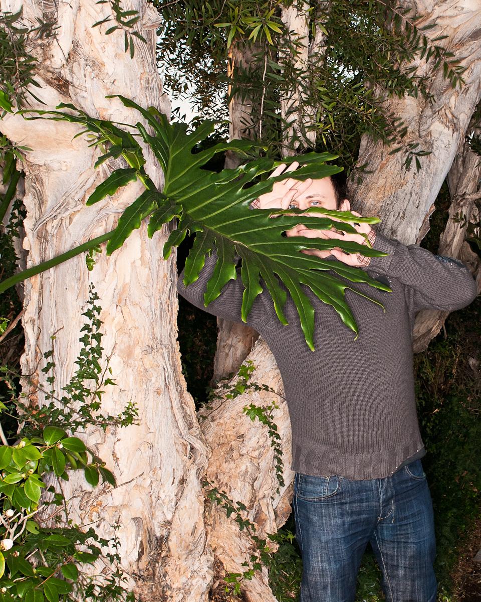Matt_B_Palm_V2.jpg