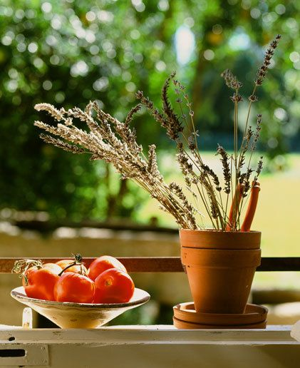 Gerard Faivre  Garden Design