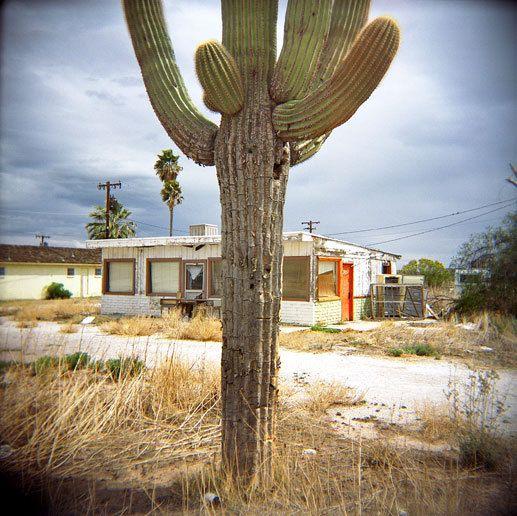 Salome, AZ