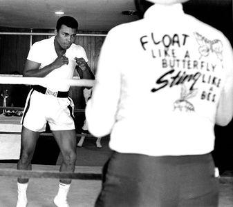 Muhammad Ali, Miami, 1964