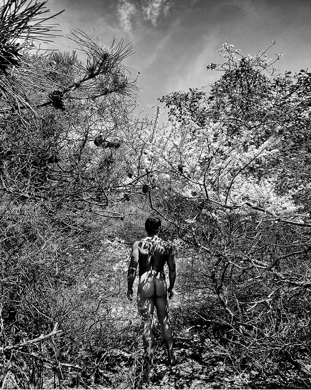 Brian_Tree_Shadows.jpg