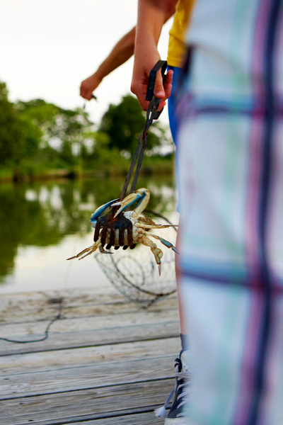 Ian-holding-a-crab-in-tongs.jpg