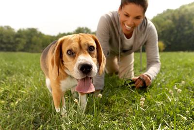 Beagle-outside-final-copy.jpg