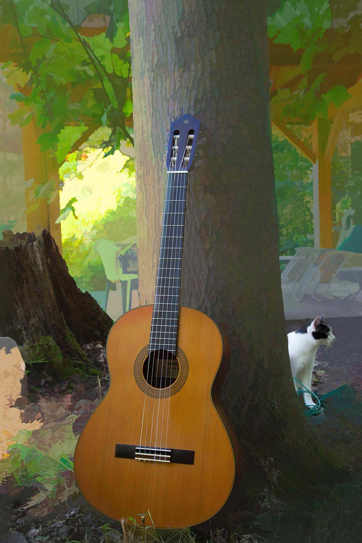 Guitar-1379-PbN1.jpg