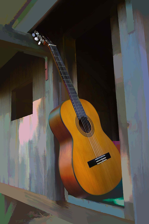 Guitar-1384-PbN1.jpg