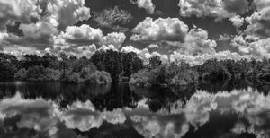Fitz Lane Pond