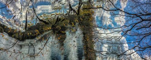 On Shmeerman's Pond