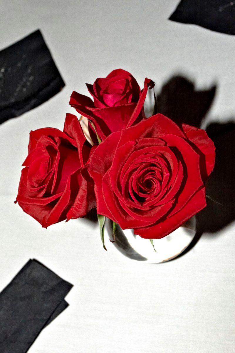 1flowers_0437.jpg