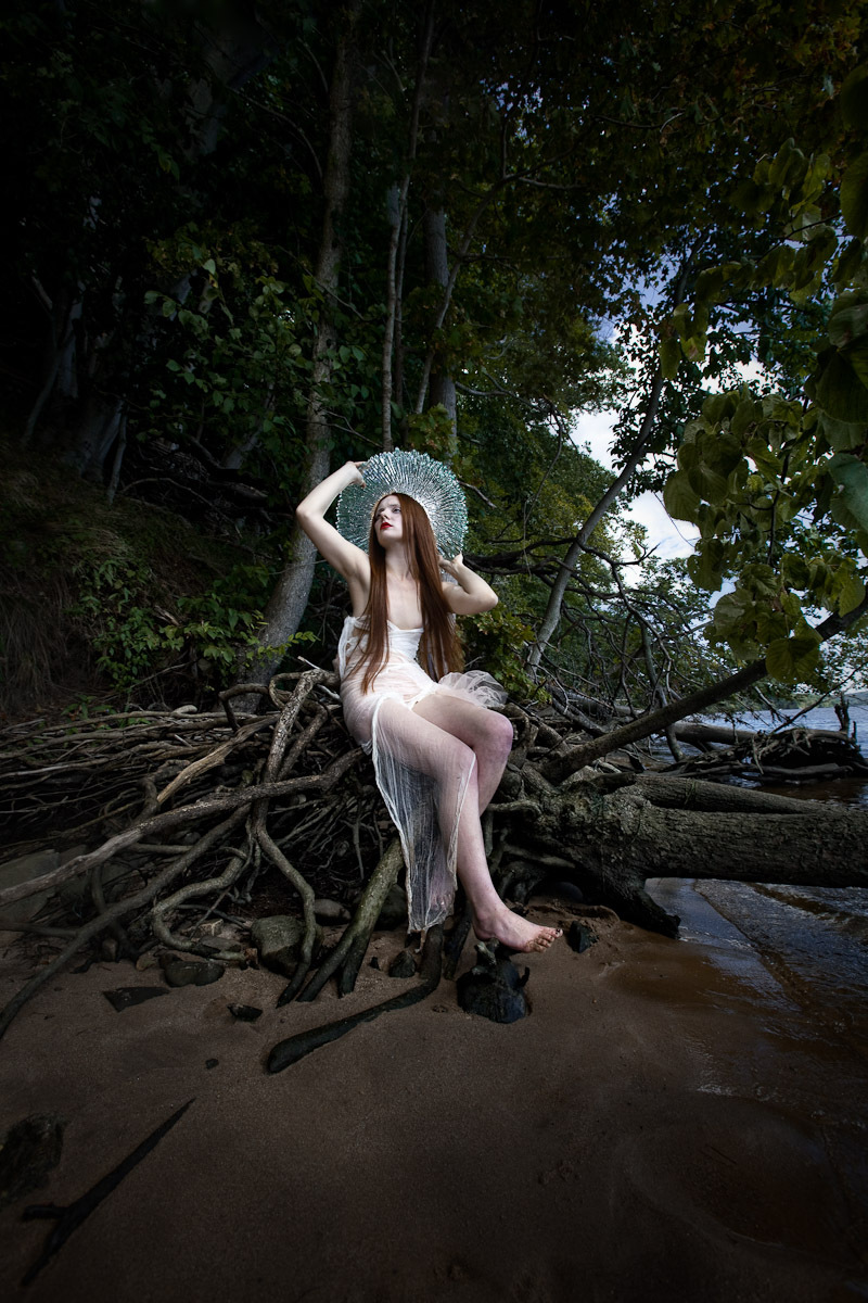 Venus on the Beach