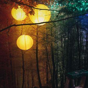 A Colorful Dream Exhibition