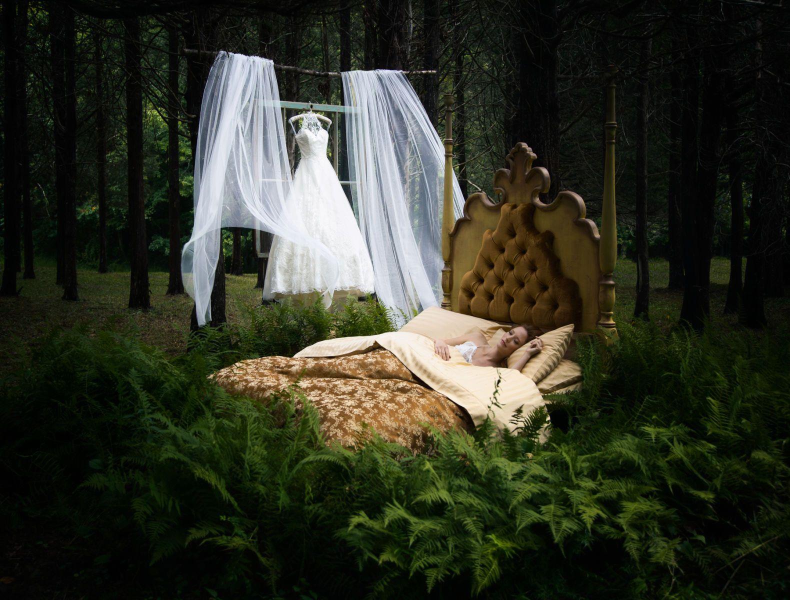 Modern Trousseau - Wedding Dresses