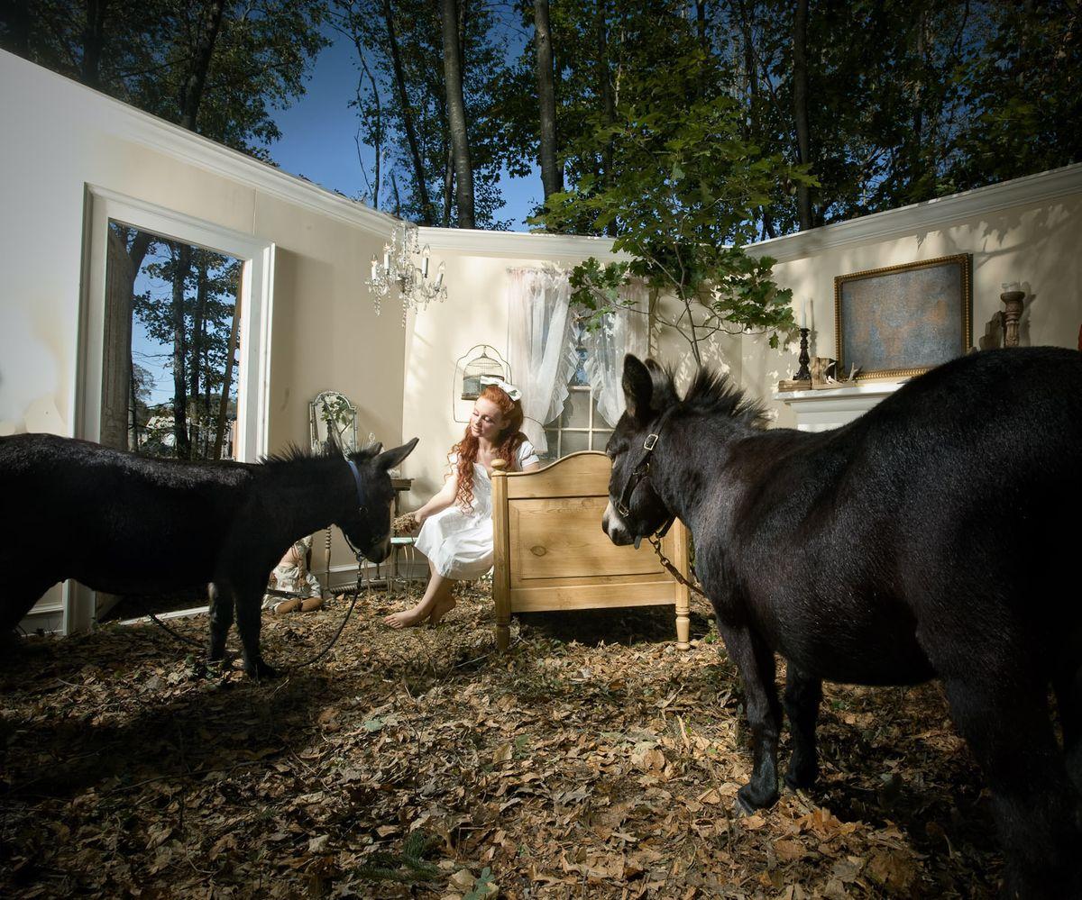 1fairytale_adrien_broom_art_photography_animals_sets_3.jpg
